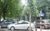 Sở GTVT Hà Nội chọn 5 tuyến phố thí điểm đỗ xe ngày chẵn, lẻ