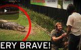 Chàng trai vừa cho cá sấu ăn vừa cầu hôn