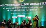 Chống buôn bán động vật, thực vật hoang dã cần sự chung tay của nhiều tổ chức