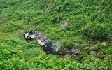 Thừa Thiên - Huế: Xe bồn mất lái lao xuống vực, 2 người thương vong