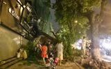Hà Nội: Gió lớn kéo đổ cây xanh đè sập mái nhà dân