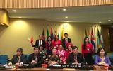Việt Nam được bầu vào Ban Tư vấn Di sản Văn hoá UNESCO