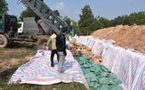 Quảng Bình tiêu hủy hơn 600 tấn hải sản chứa Cadimi vượt ngưỡng