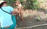 Nghi can hành hạ bé trai Campuchia có phải do ngáo đá?