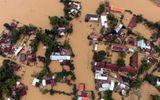 Bình Định đề nghị Chính phủ hỗ trợ khẩn cấp 500 tỷ đồng khắc phục hậu quả mưa lũ