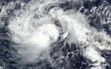 Hàng trăm nghìn người Philippines sơ tán khẩn cấp để tránh bão Nock-Ten