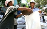 12 tỉnh đề nghị Trung ương cấp gạo cứu đói