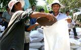 Thủ tướng Chính phủ chỉ đạo hỗ trợ hơn 10.000 tấn gạo cho 12 tỉnh