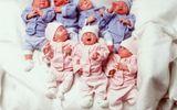 Sau 20 năm, những đứa trẻ trong ca sinh 7 đầu tiên trên thế giới giờ ra sao?