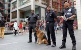 Malaysia bắt giữ 140 lao động Triều Tiên trái phép