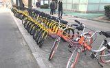 Thuê xe đạp qua smartphone đang gây sốt tại Trung Quốc