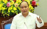 Thủ tướng yêu cầu 3 tỉnh kiểm tra phản ánh việc chặt phá rừng