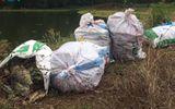 Bình Dương: Hàng tấn cá chết nổi trắng hồ Từ Vân 1