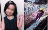 Hình ảnh cuối cùng của bé gái người Việt trước khi mất tích tại Nhật Bản