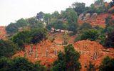 Đà Nẵng yêu cầu tháo dỡ công trình trái phép ở bán đảo Sơn Trà