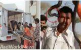 Người đàn ông tử vong vì sở thích chụp ảnh với rắn