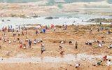 Sau tin đồn tìm thấy đá quý, hàng trăm người bỏ đồng ra sông tìm vận may