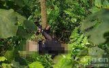 Lời khai nghi phạm 15 tuổi sát hại người phụ nữ, trói vào gốc cây