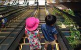 10 nguyên tắc vàng cha mẹ cần lưu ý khi cho con đi thang cuốn