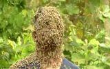 Để 60.000 con ong bâu kín mặt, chàng trai vẫn thản nhiên nói chuyện đọc sách