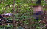 Điều tra nguyên nhân thiếu nữ chết trong tư thế treo cổ ở vườn tràm