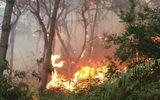 Giữa nắng nóng, rừng phòng hộ ở Sóc Sơn cháy suốt 12 giờ