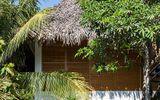 Mê mẩn với ngôi nhà vườn lợp mái lá dừa đẹp ngang khu nghỉ dưỡng cao cấp