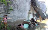 Sạt lở trong đêm, 5 căn nhà đổ sụp xuống sông
