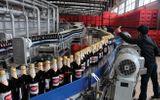 Sabeco bán bia, thu hơn 75 tỷ đồng mỗi ngày