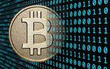 Giá Bitcoin xuyên thủng mức 4.000 USD, lập kỷ lục mới