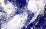 Tin tức mới nhất cơn bão số 7 giật cấp 11 trên Biển Đông