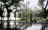 Dự báo thời tiết ngày 30/8: Hà Nội mưa đến hết tháng 8