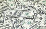 Tỷ giá USD 31/8: Phục hồi từ đáy do căng thẳng chính trị tạm lắng