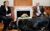 Điện Kremlin: Tổng thống Nga Putin bị tạp chí Đức xúc phạm nặng nề
