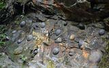 """Kì lạ vách đá cứ 30 năm lại """"đẻ trứng"""""""