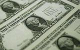 Tỷ giá USD 15/9: Đồng USD giữ mức ổn định