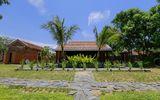 Ghé thăm khu nhà vườn đẹp như thiên đường nơi xứ Quảng