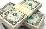 Tỷ giá USD 4/10: Đồng bạc xanh trụ vững ở mức cao, tỷ giá trung tâm tăng 5 đồng