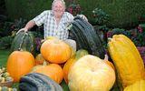 Lạc vào xứ sở tràn ngập rau trái khổng lồ của ông lão 72 tuổi