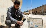 Nga phản pháo đanh thép kết luận của LHQ về vụ tấn công hóa học Syria