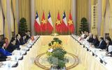 Chủ tịch nước Trần Đại Quang hội đàm với Tổng thống Chile Michelle Bachelet