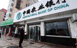 Ngân hàng Nông nghiệp Trung Quốc được mở chi nhánh tại Hà Nội
