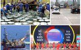Chỉ đạo, điều hành của Chính phủ, Thủ tướng Chính phủ nổi bật tuần từ 13-17/11
