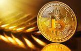 Giá bitcoin hôm nay 24/11: Giá bitcoin lao xuống dưới ngưỡng 8.000 USD