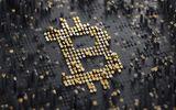 """Giá bitcoin hôm nay 30/11: Bitcoin giảm """"điên cuồng"""" sau khi tăng kỷ lục 11.363 USD"""