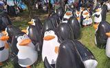 Thu vé 350 nghìn đồng, sở thú cho du khách xem chim cánh cụt... bơm hơi