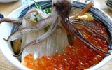Hậu quả khó lường từ thói quen ăn hải sản sống