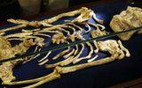 Trưng bày bộ xương hóa thạch quý hiếm 3,6 triệu năm tuổi của tổ tiên loài người