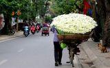 Dự báo thời tiết 10/12: Miền Bắc hửng nắng, Nam Bộ mưa dông