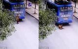 Cậu bé thoát chết kì diệu sau khi bị xe khách cán ngang người